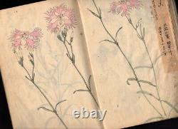 1930s Hand-Painted Sketchbook Many Colored Flower Paintings Japanese Antique
