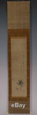 JAPANESE PAINTING HANGING SCROLL JAPAN PINE OLD Matsumura ANTIQUE ORIGINAL 049m