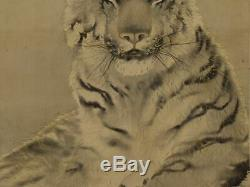 JAPANESE PAINTING HANGING SCROLL JAPAN TIGER OLD ART PICTURE ANTIQUE d527