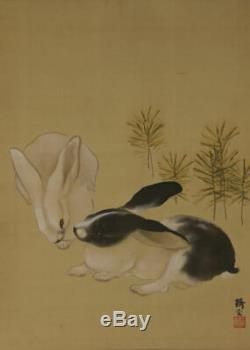 JAPANESE PAINTING HANGING SCROLL White RABBIT ART JAPAN PICTURE OLD d864