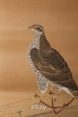 Rare early Painting depicting Takanari Hawk 17-18th century Edo GG14