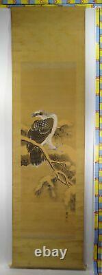 UK519 KAKEJIKU Bird Animal Hanging Scroll Japanese Art painting Nihonga Picture